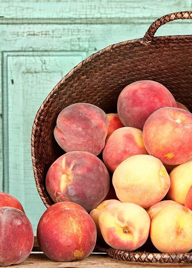 Peach Jam 1