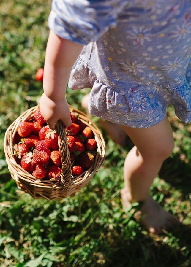 Natura Strawberry Jam 1