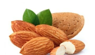 Discover the healthy properties of the Almond