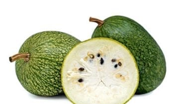 The 3 benefits of Fig-Leaf Squash you should know