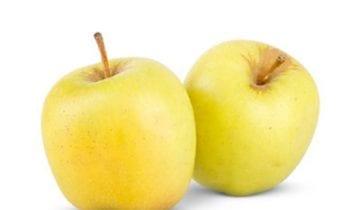 The amazing properties of Bravo de Esmolfe Apple in Health