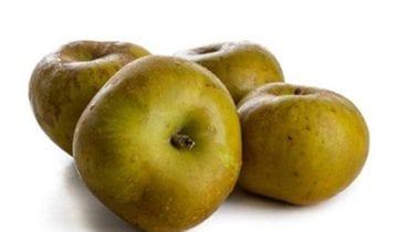 The wonders of the Reineta Apple