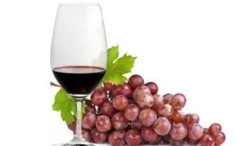 Benefícios do Vinho do Porto para a saúde