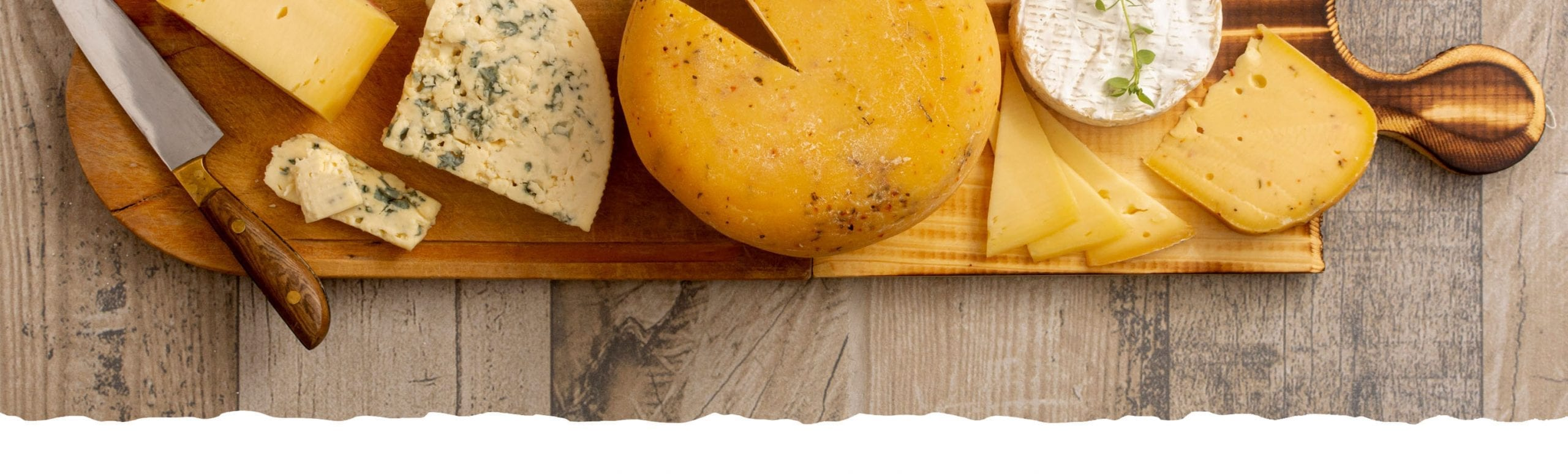 Discover the amazing Parmesan cheese 2