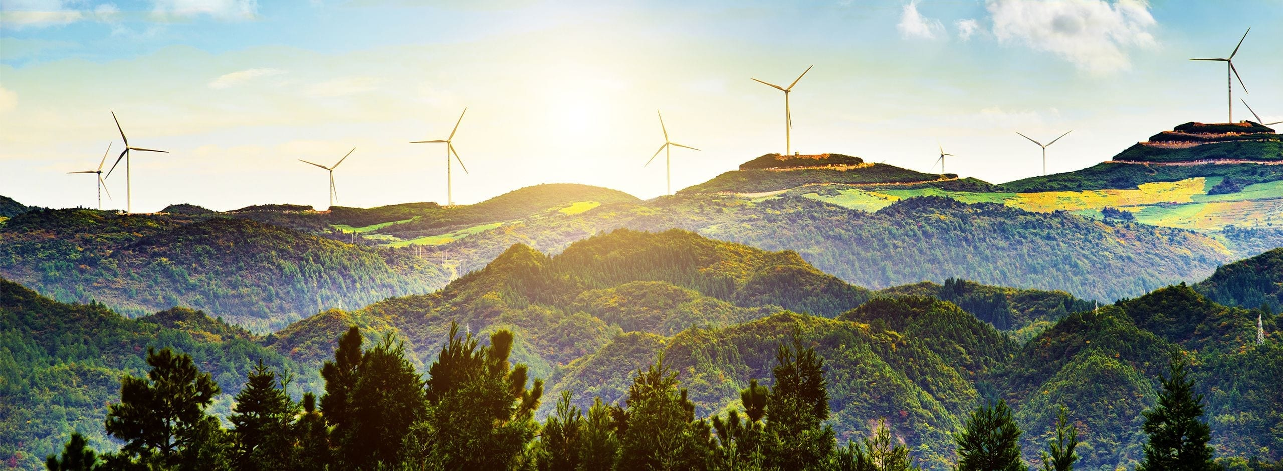 Sustainability 1